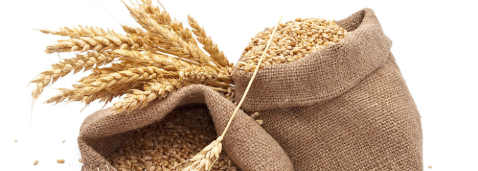 Gluten-Free: Is It Right For You?